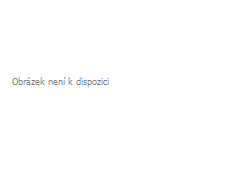 Badematte mit Memory-Schaum DOT orange